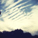 夕方の空とうろこ雲